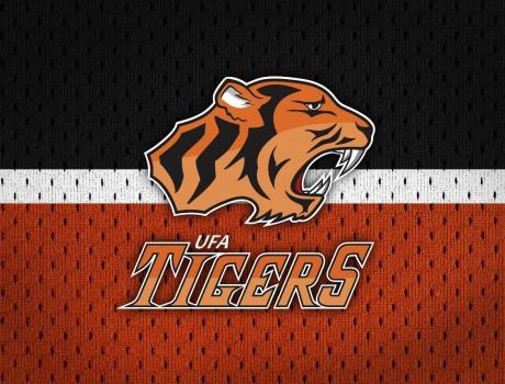 ЛХК «Tigers»