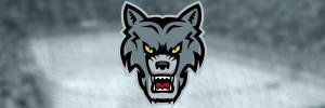 ЛХК «Волки»